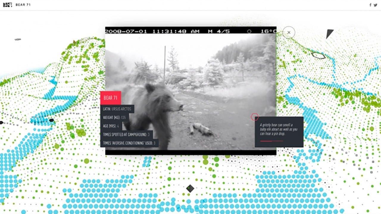 XRMust_Bear71VR.jpg